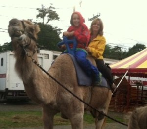 Camel ride at Marshfield Fair